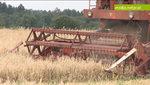 Modernizacja gospodarstw szansą dla polskiej wsi